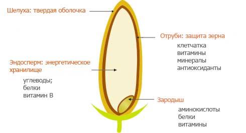 Состав зерна риса