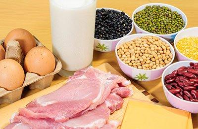 белки в сбалансированном питании