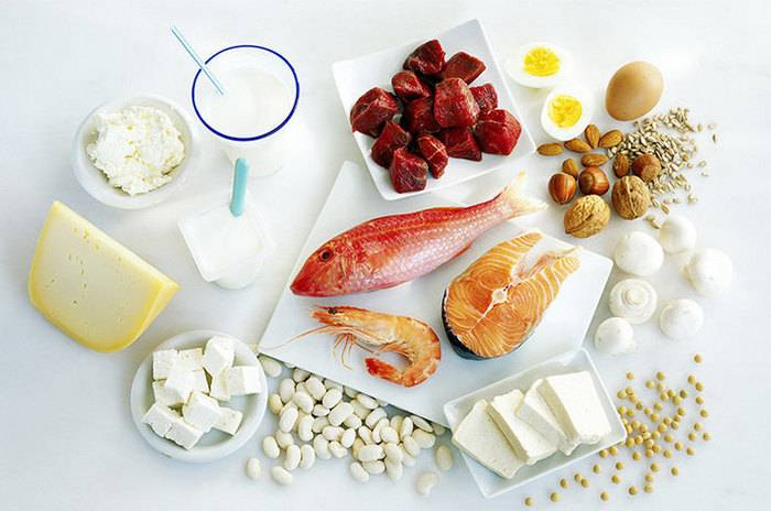 белковая диета