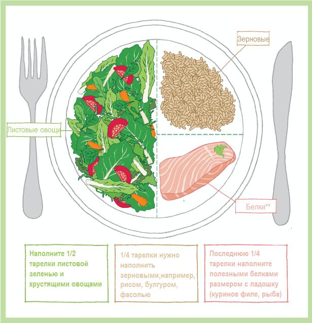 Схема здоровой тарелки