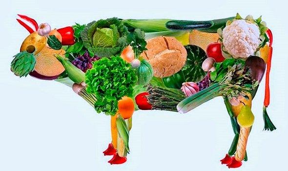 Корова из овощей (вегетерианство)